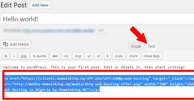 Paste Affiliate Link in WordPress Post
