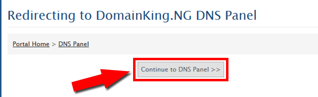 Continue to DNS Panel