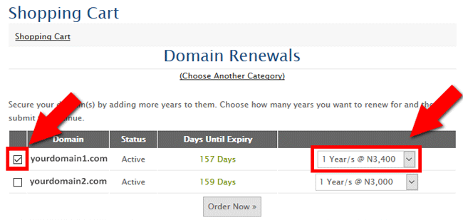 Domain Renewal at DomainKing
