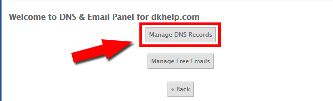 Click Manage DNS Records