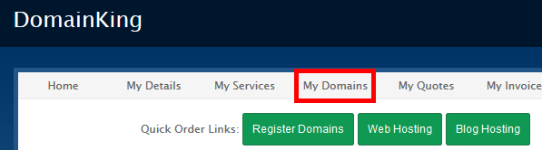 My Domains in DomainKing.NG client panel