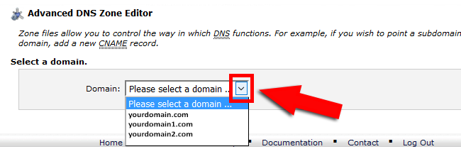 Select Domain DNS Zone Editor